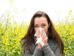 allergy-allergies-hayfever-asthma