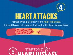 8 Facts About Heart Disease