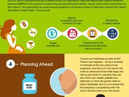 how woman can avoid birth defects to have a healthy-baby infographic