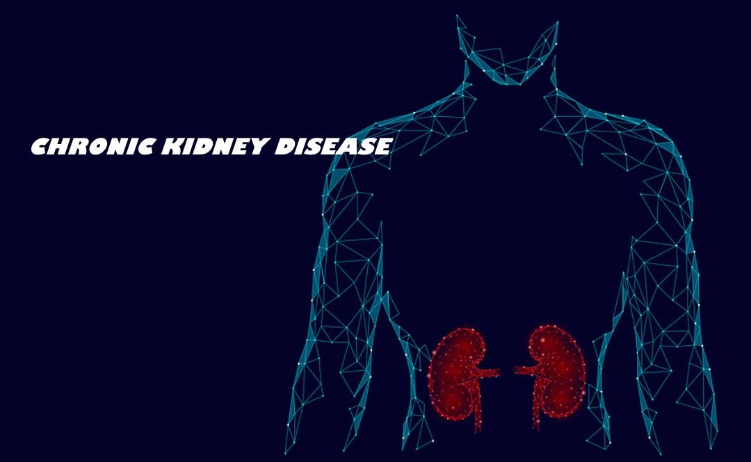 World Kidney Day; All You Need to Know About Chronic Kidney Disease